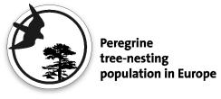 2013_nadrzewny-logo